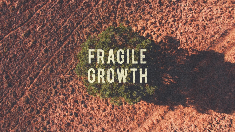 Image result for Fragile Growth